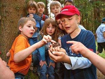 Natur-Erlebniscamp  (Ferienlager)