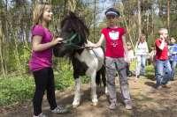 Erlebniscamp mit Tieren