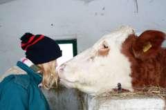 Ferienlager auf dem Bauernhof - Tiere und Natur!