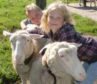 Bauernhof-Ferienlager mit Pflegetier